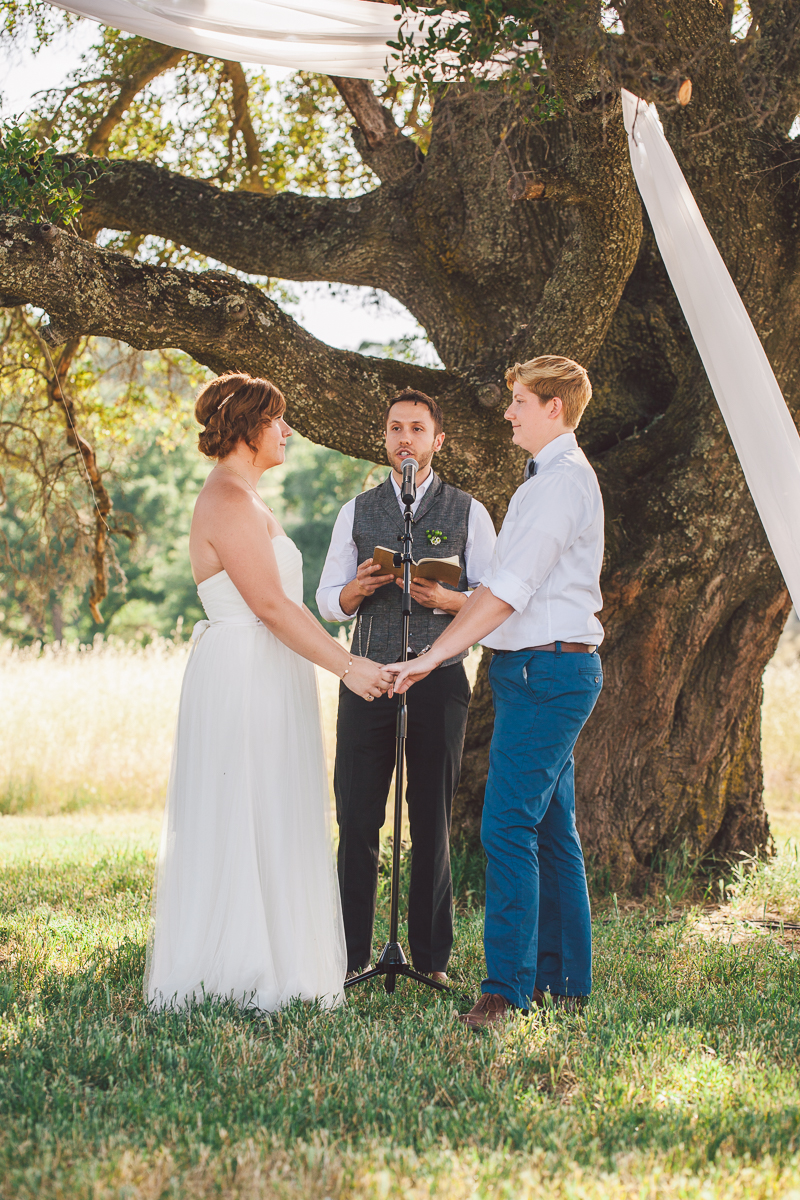 modesto gay wedding