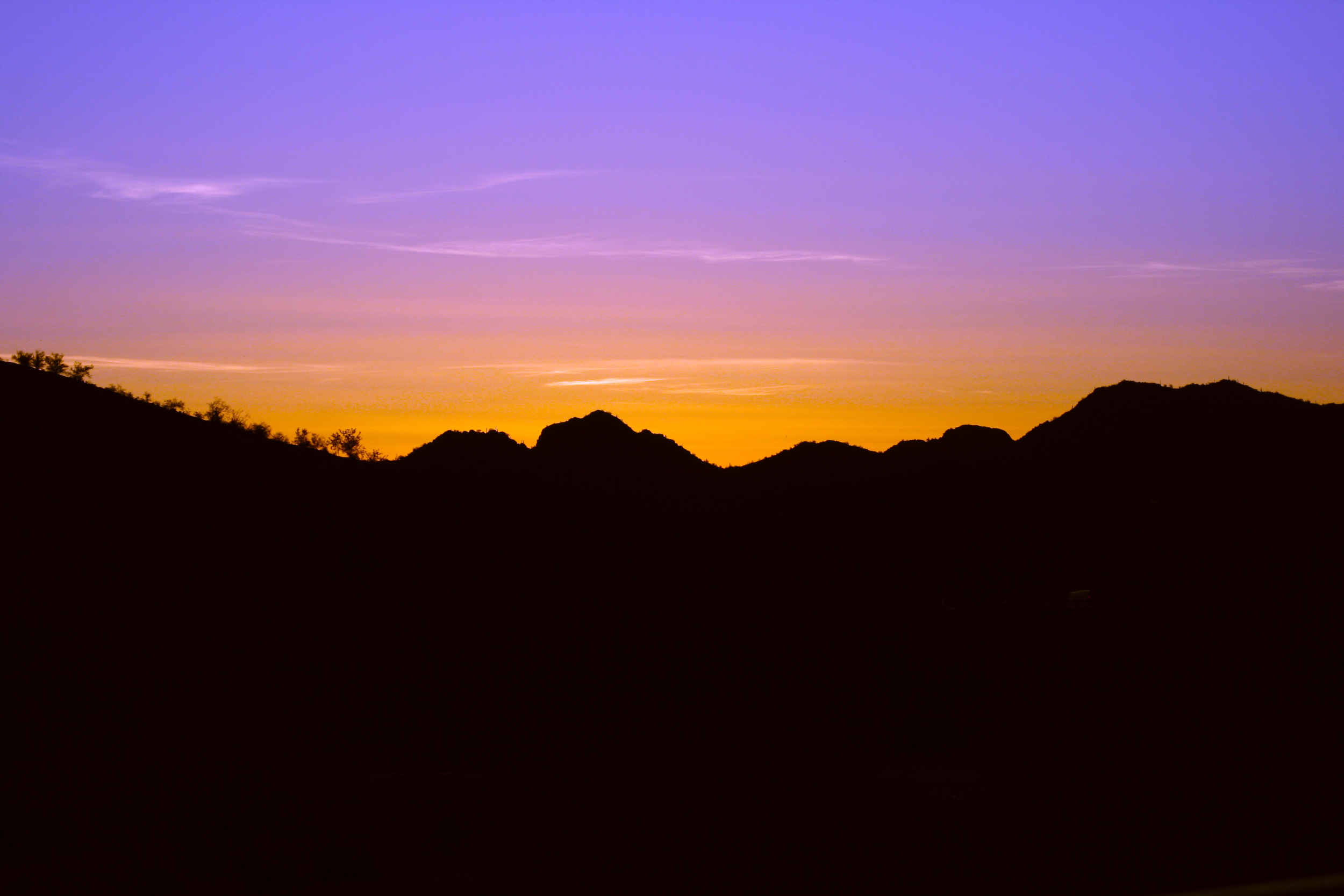 100316_Arizona_0013.jpg