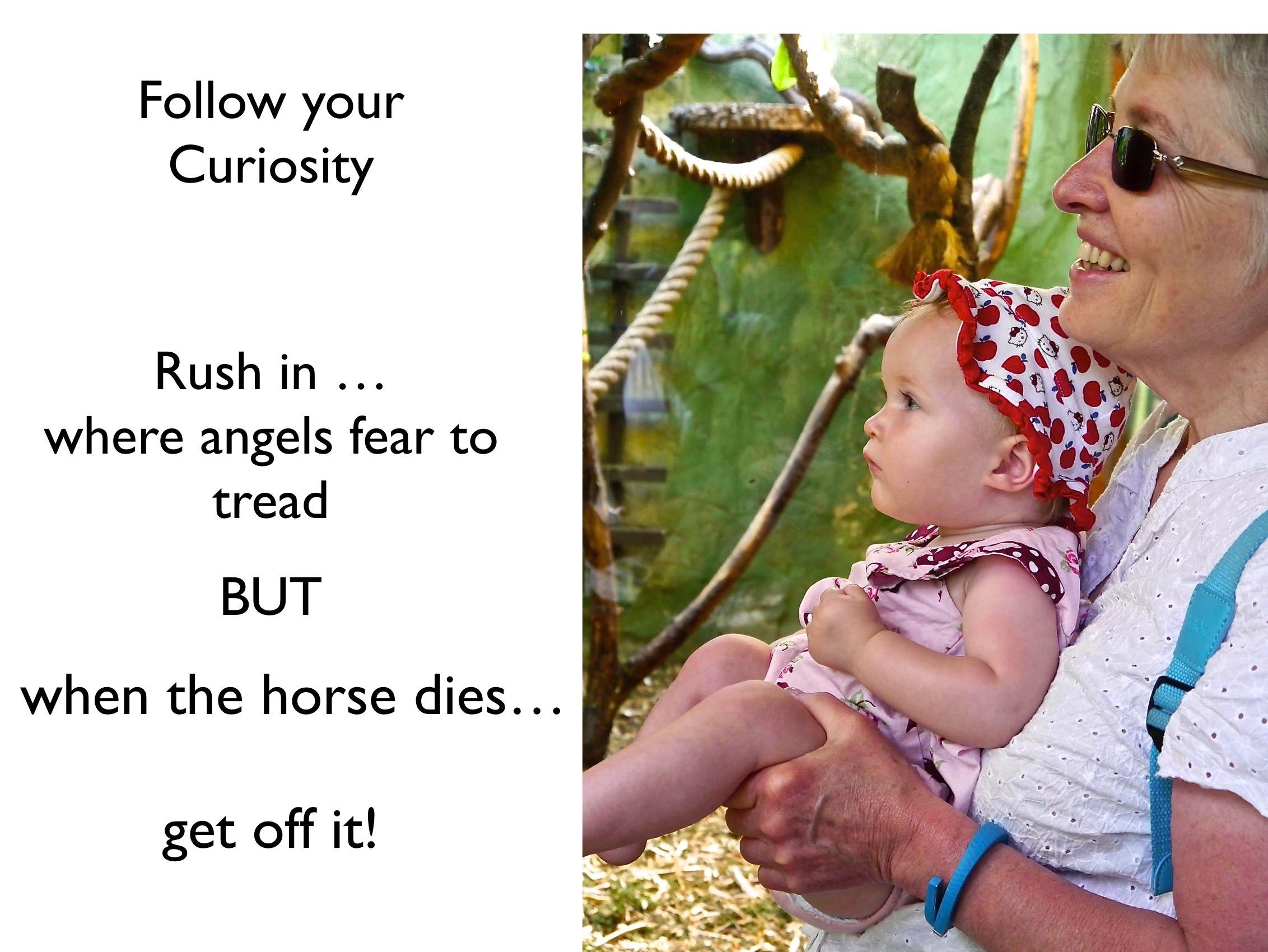 Curiosity!