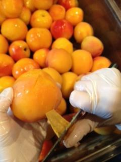 Chef Courtney peeling Pearson Farm Peaches
