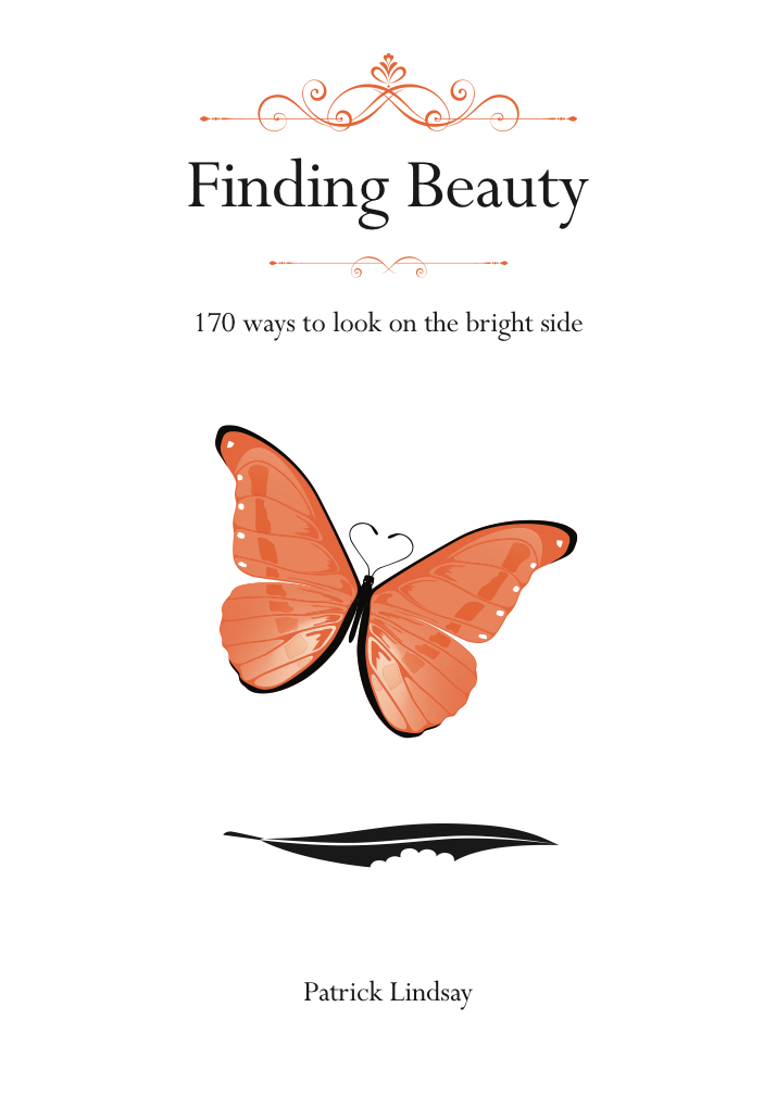 Finding Beauty, 170 ways to look the bright side.png