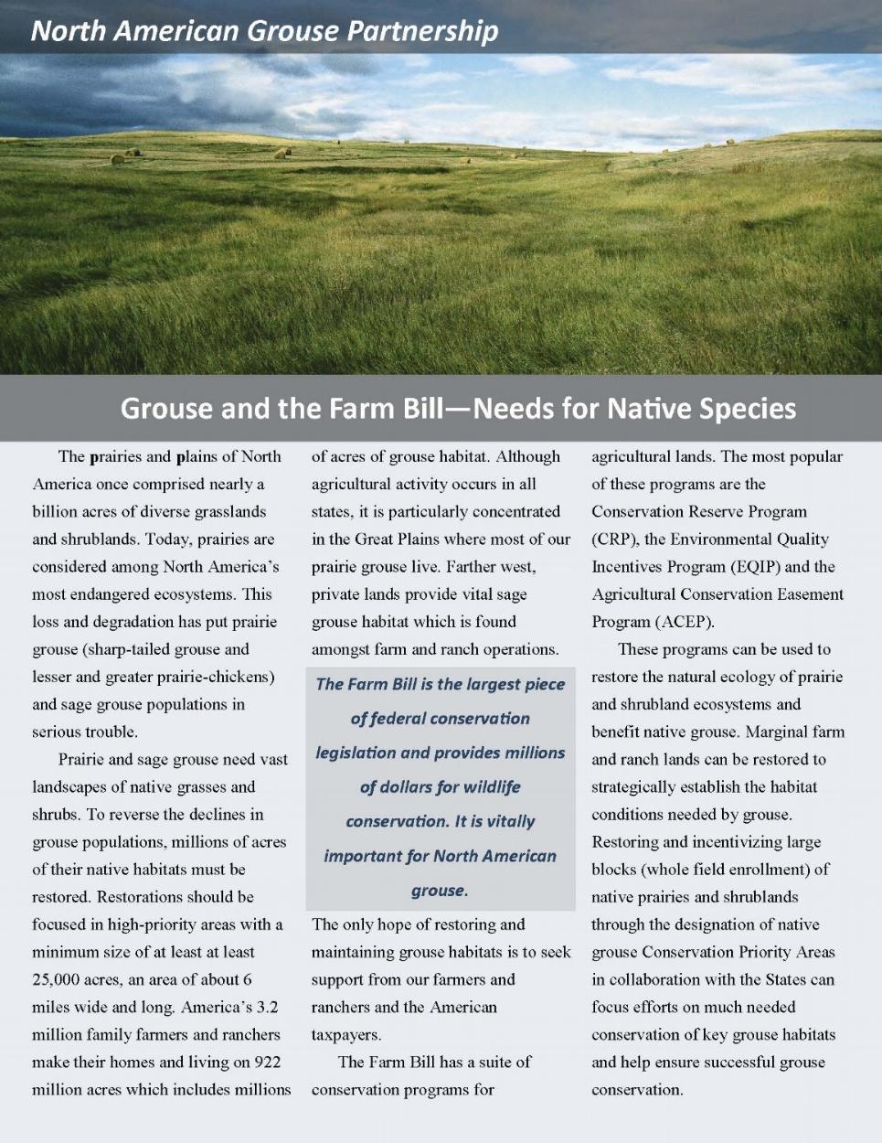 Farm Bill Brochure cover image.jpg