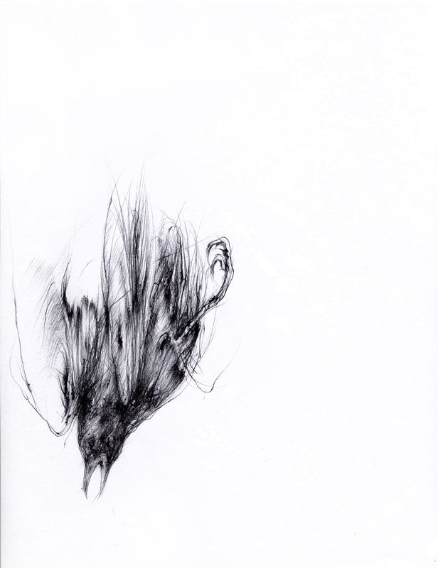 Untitled, 2011, ballpoint pen on paper