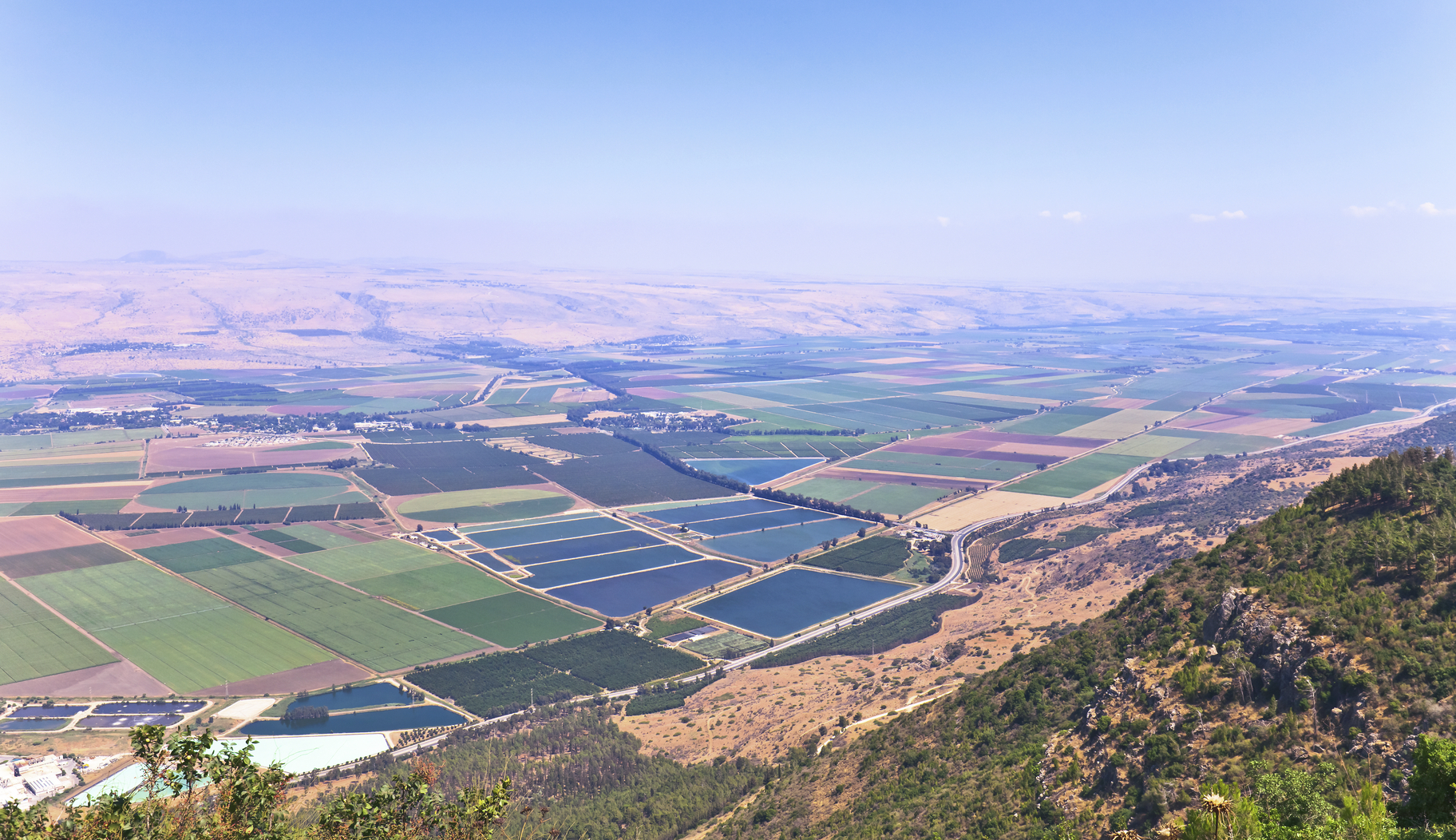 Technologies such as drip irrigation have transformed the Negev Desert into fertile farmlands  (Source  iStock )
