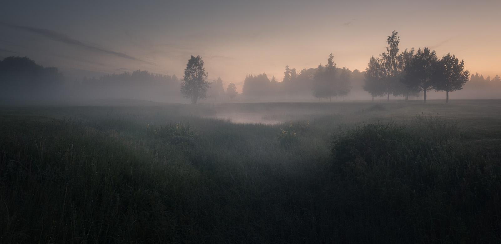 Field of Darkness