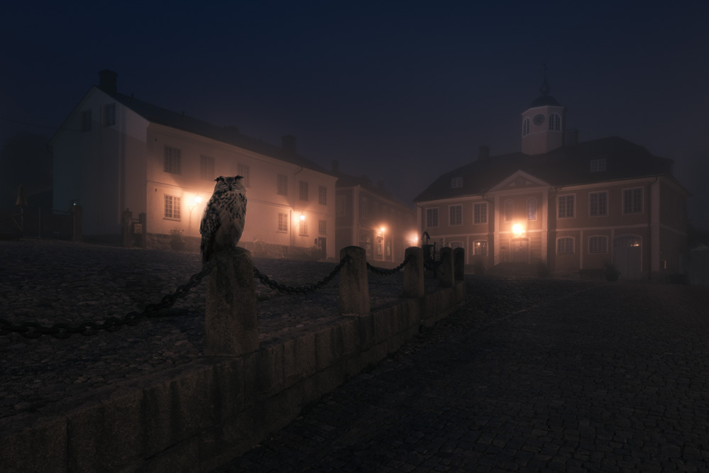 Mikko Lagerstedt - Night Animals - Owl