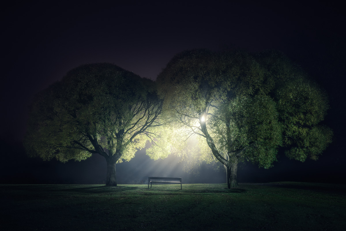 Mikko Lagerstedt - Fading Light