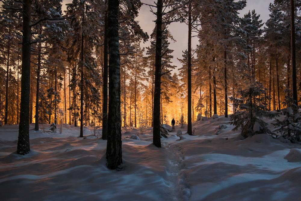 Mikko Lagerstedt - Between Two Worlds - 2013 - Nokia, Finland