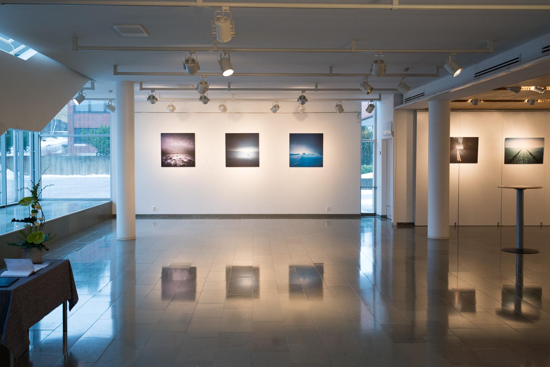 Mikko-Lagerstedt-Galleria.jpg