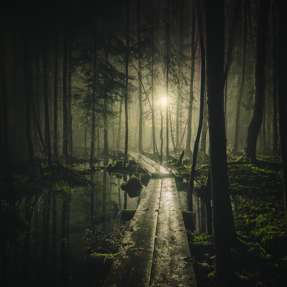 Mikko Lagerstedt - Pathway