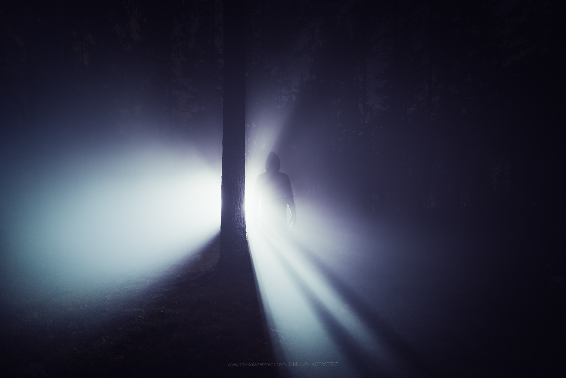 Mikko Lagerstedt - Lost in the Mist,   2014