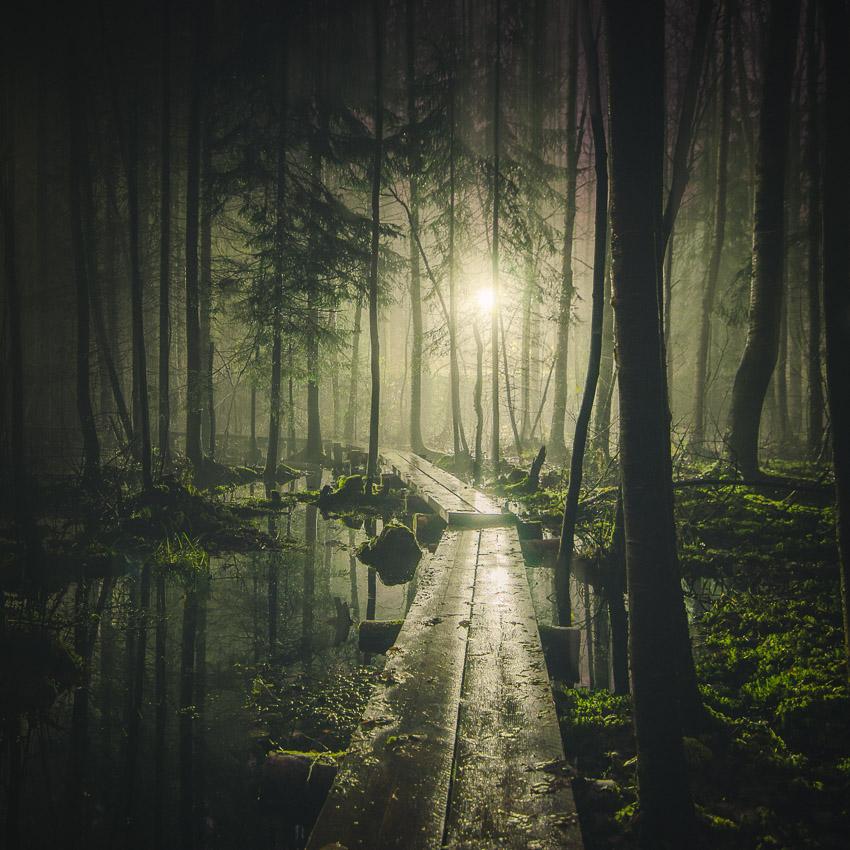 Mikko Lagerstedt -Pathway - 2014,Tuusula, Finland