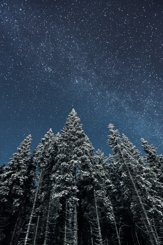 Star-Photography-4.jpg