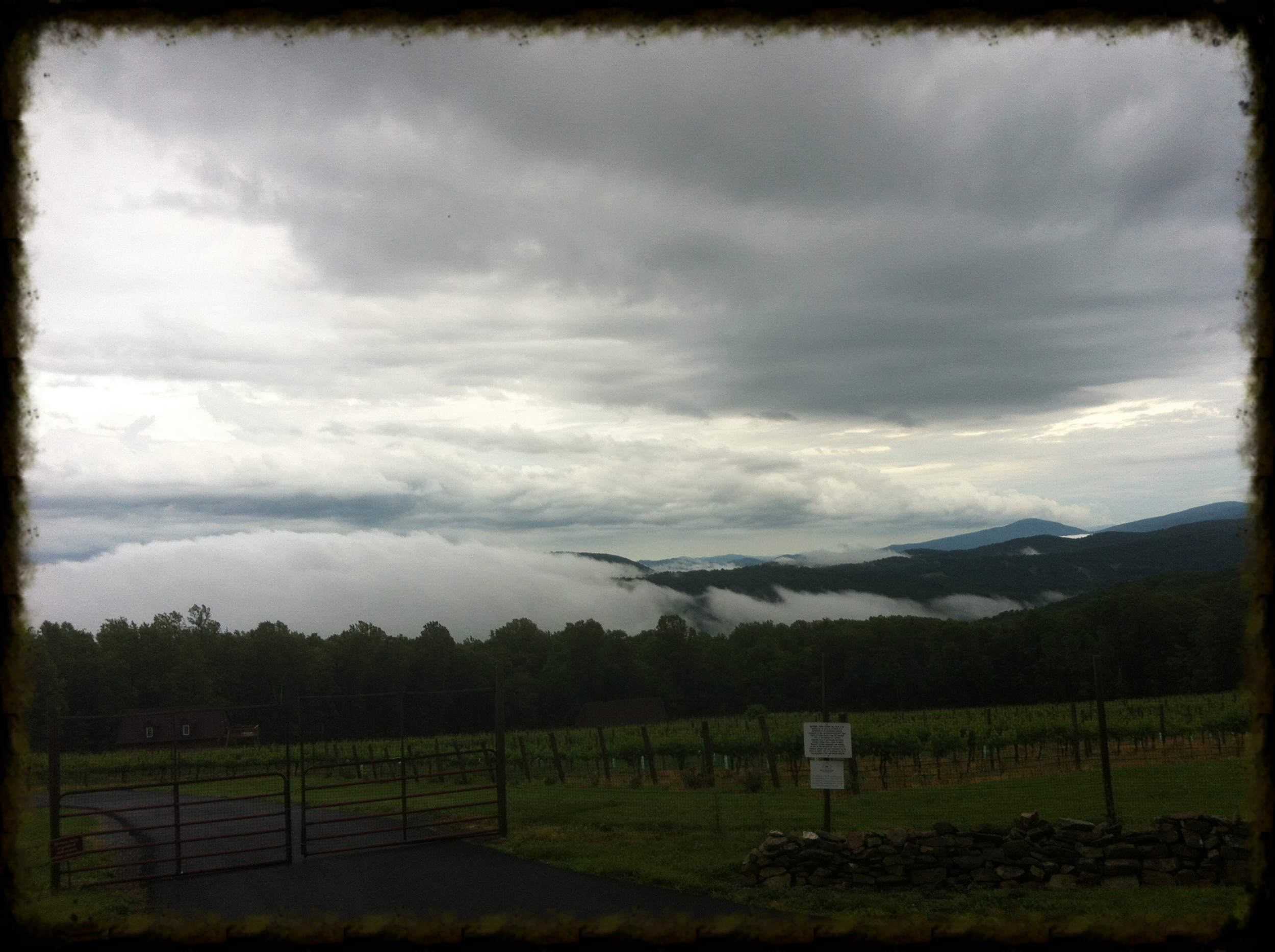 Looking South From Blue Mountain. Linden, VA -Garth Woodruff