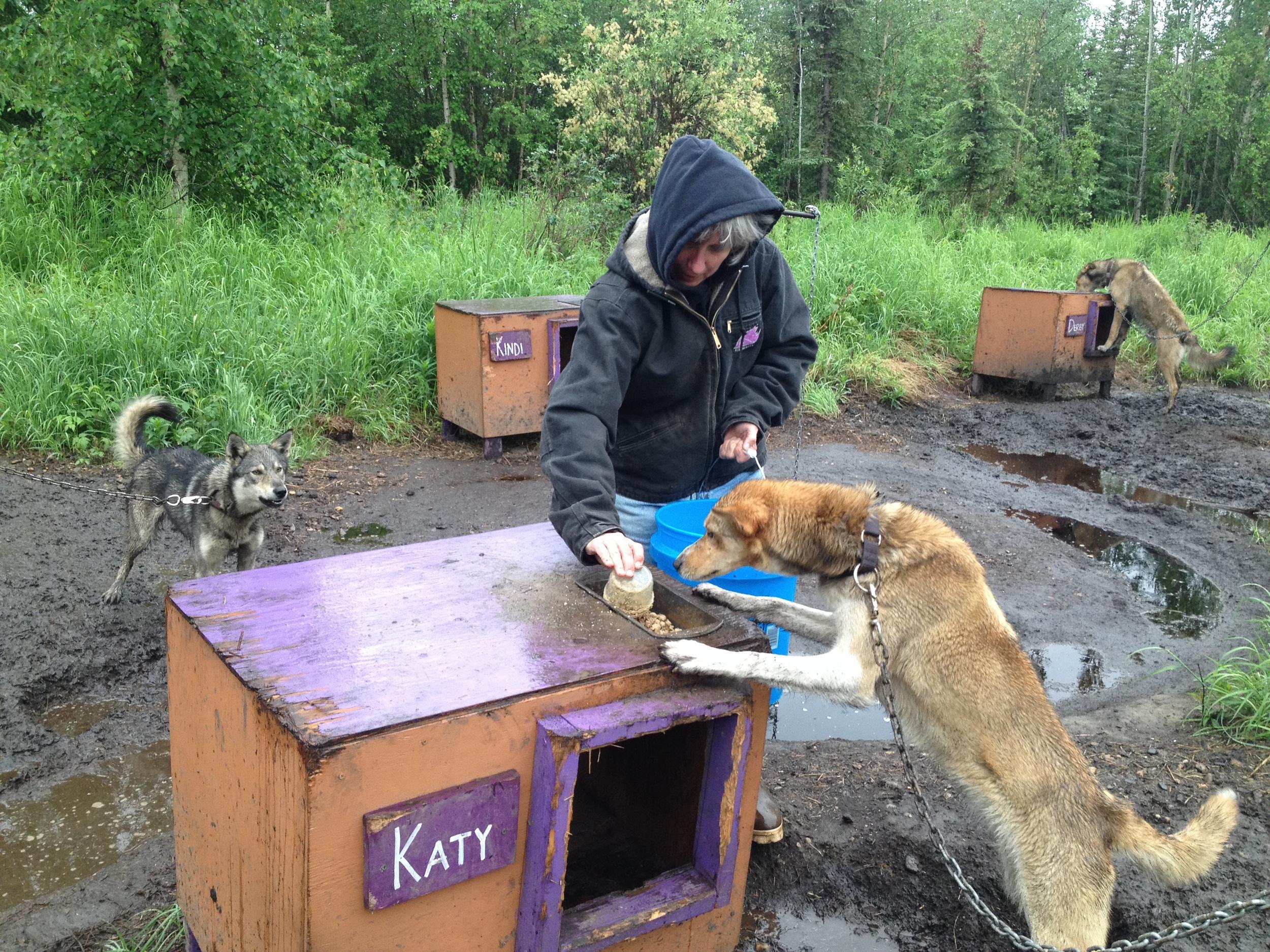 Katy Human feeding Katy Canine