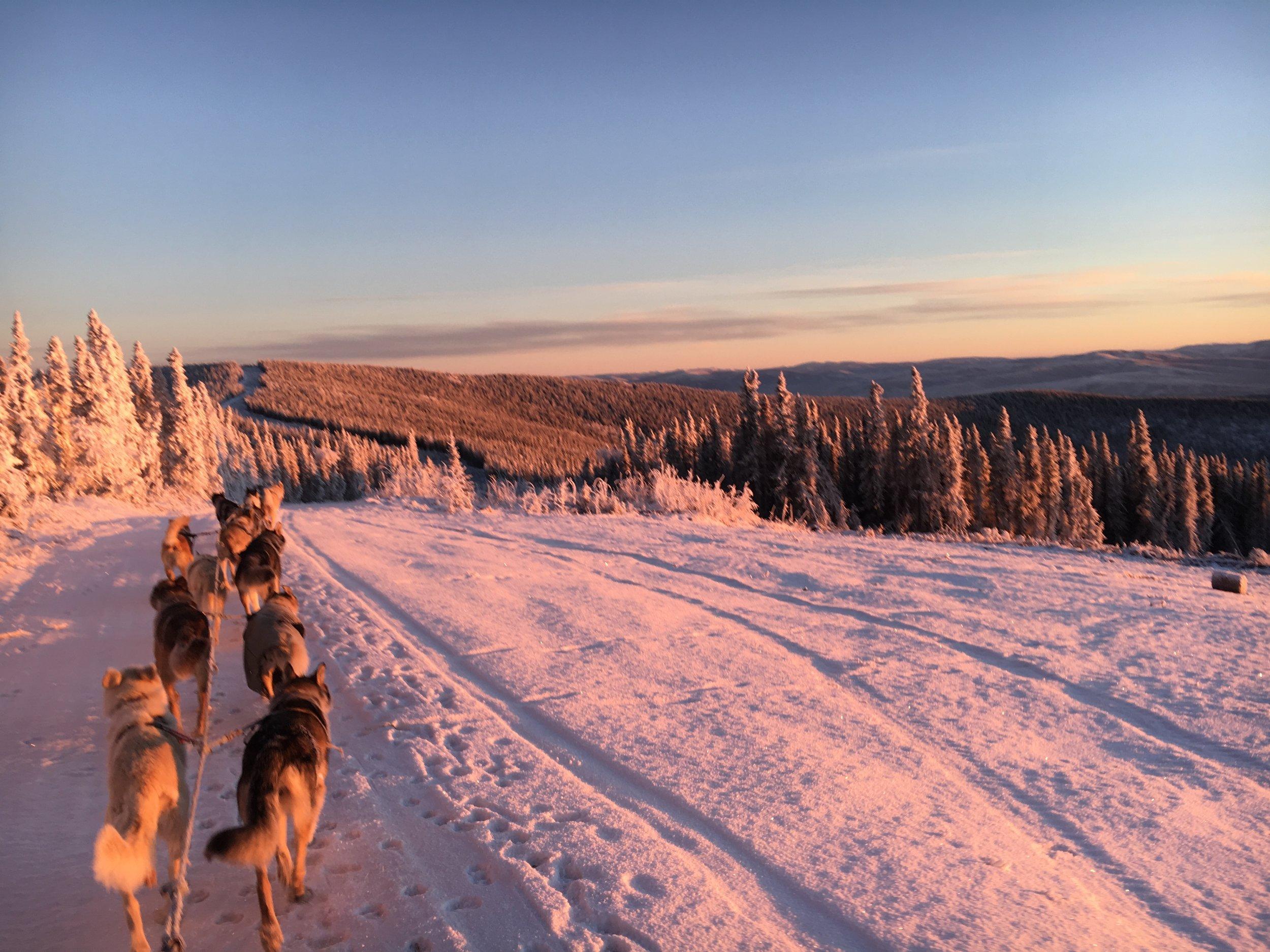 The team basking in the alpine glow of 3:15 PM in Alaska.