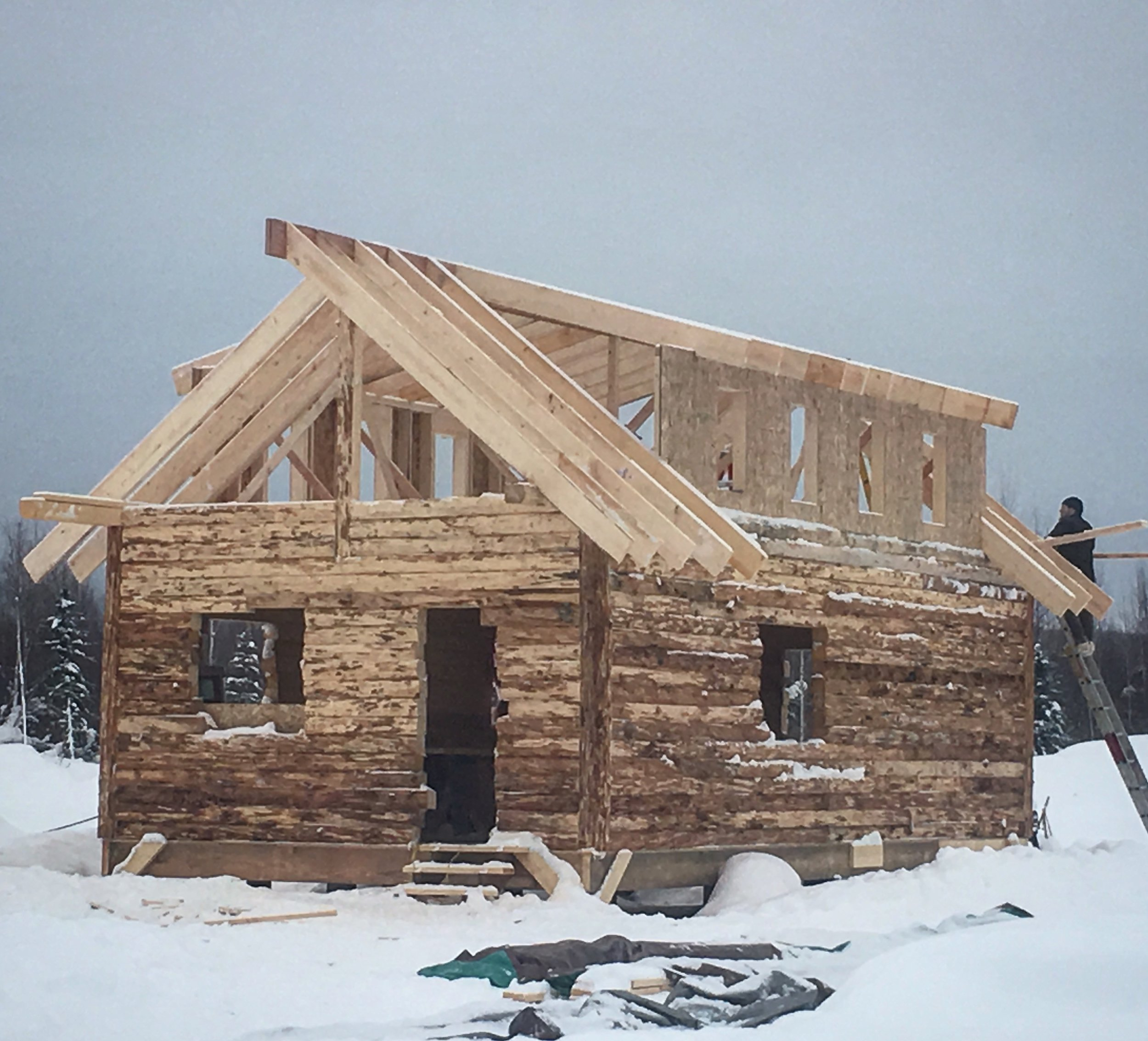It's starting to look like a cabin!