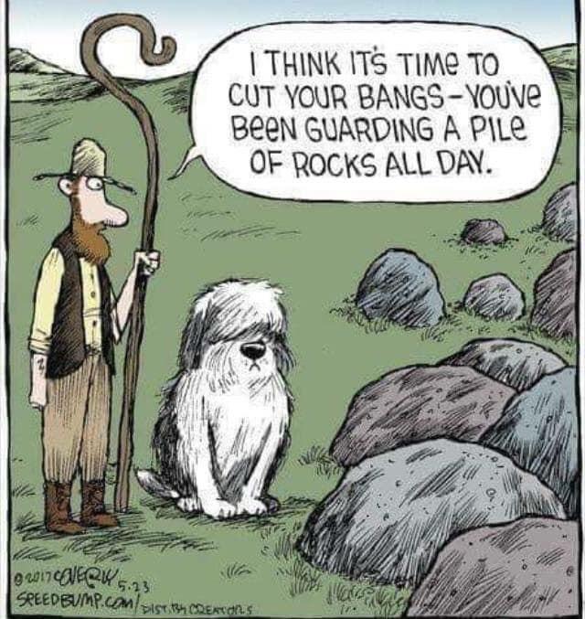 A cartoon to make you smile.