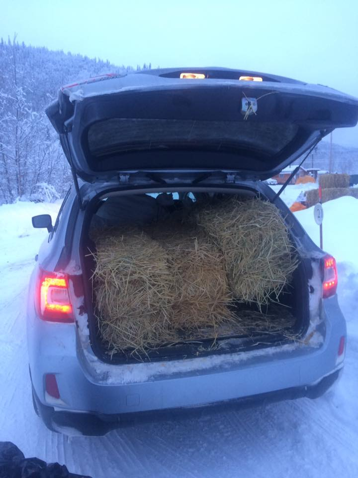 35 fill car with straw.jpg