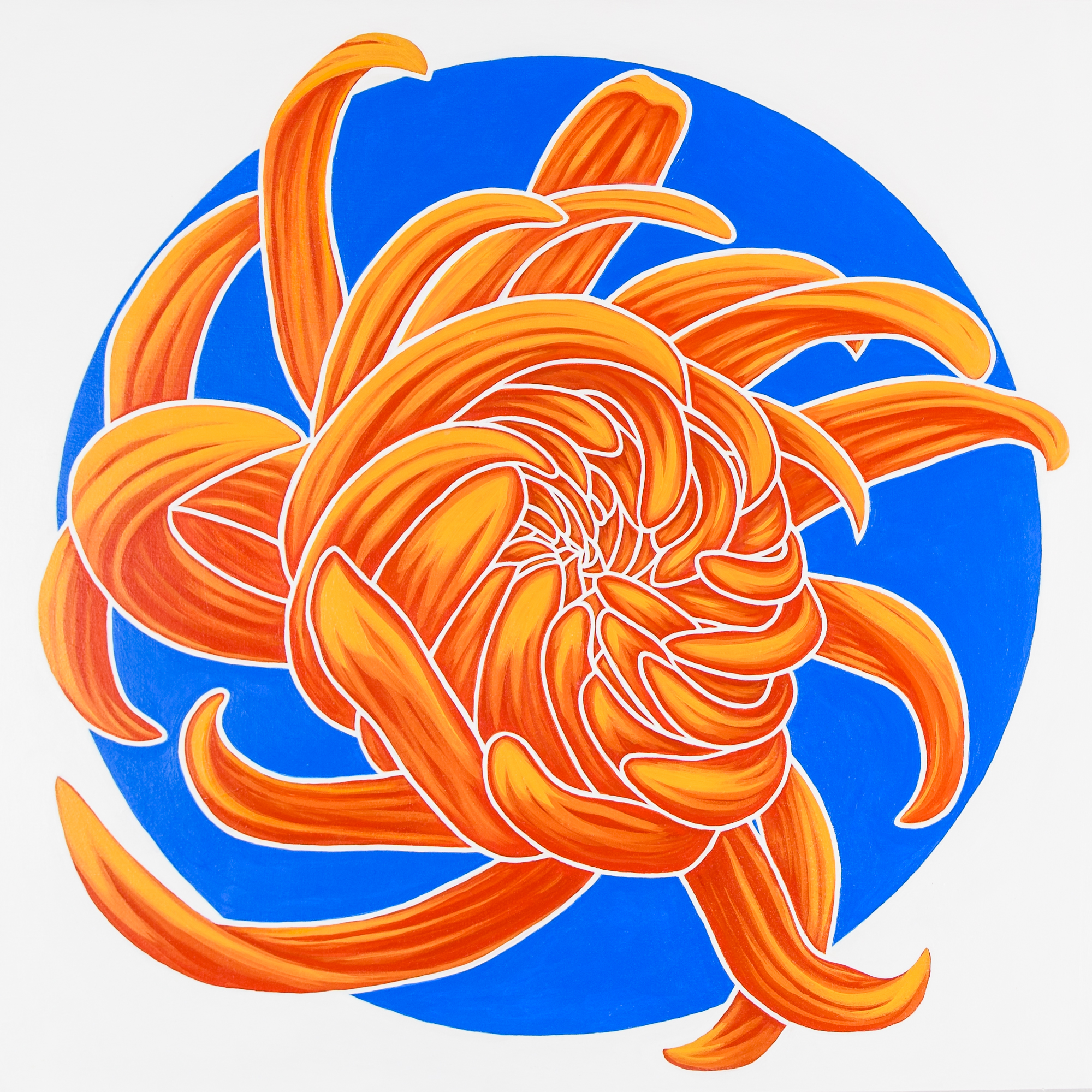 """California Dream III   Reminiscent of sunshine, surfboards and muscle cars this chrysanthemum shines.  acrylic painting on 20""""x20""""(x 1 5/8"""") gallery wrapped canvas  $1100.00"""