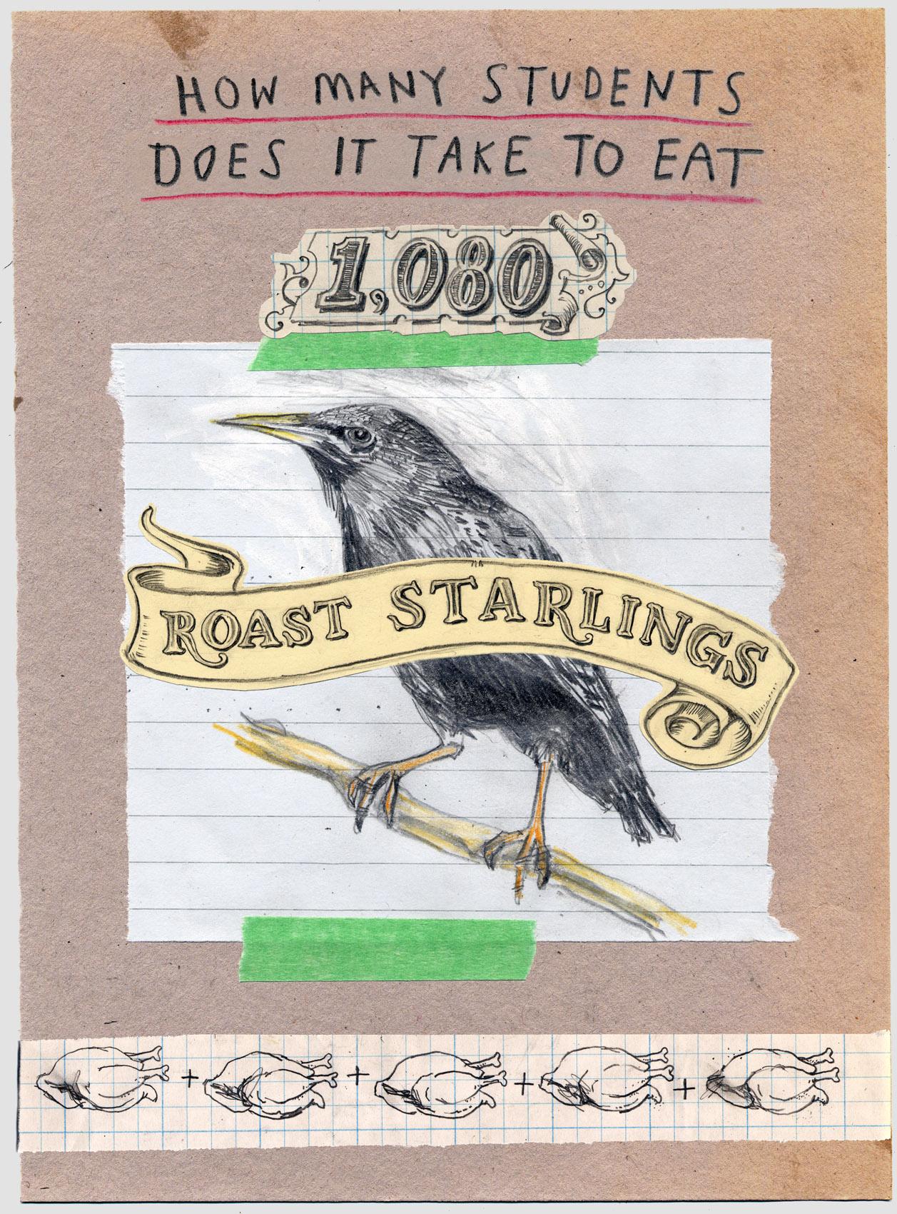 Starlings_final.jpg