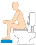 Correct_toilet_position_with_copyright_only.jpg