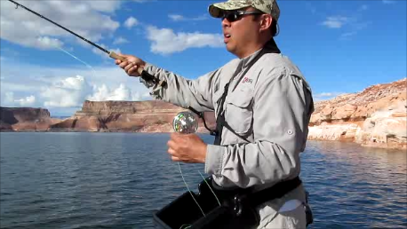 Rexfly double haul fly rod casting.png