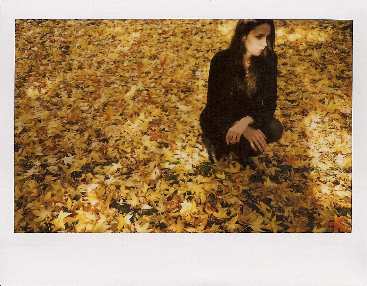 towfigh leaves.jpg