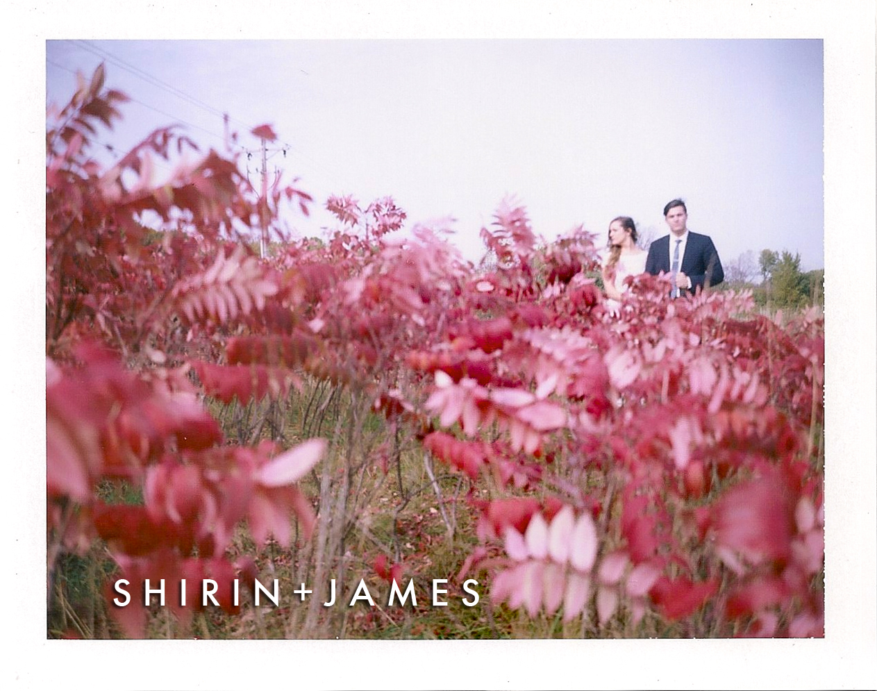 shirinandjames