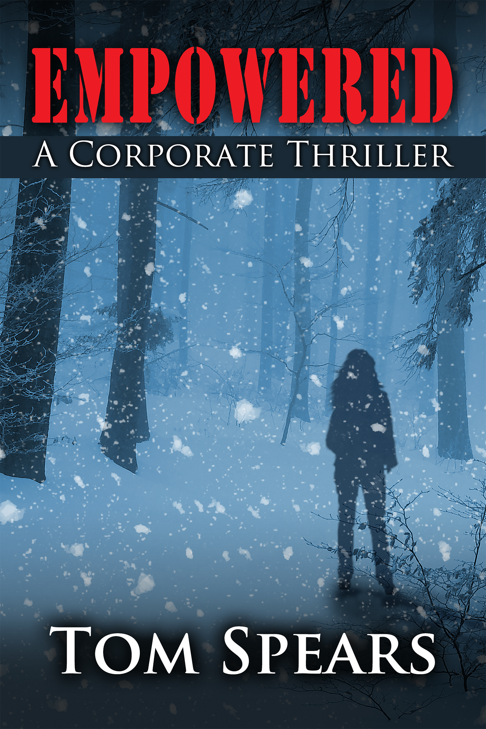 This is the final day to get a free Kindle copy of my latest novel. Click the email for details.