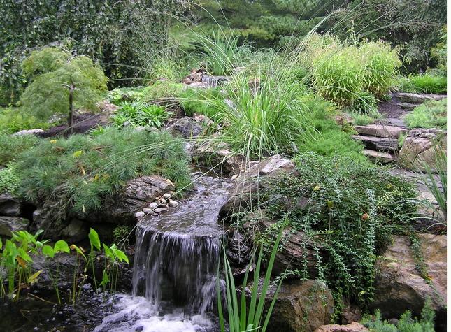 Naturalistic Creek
