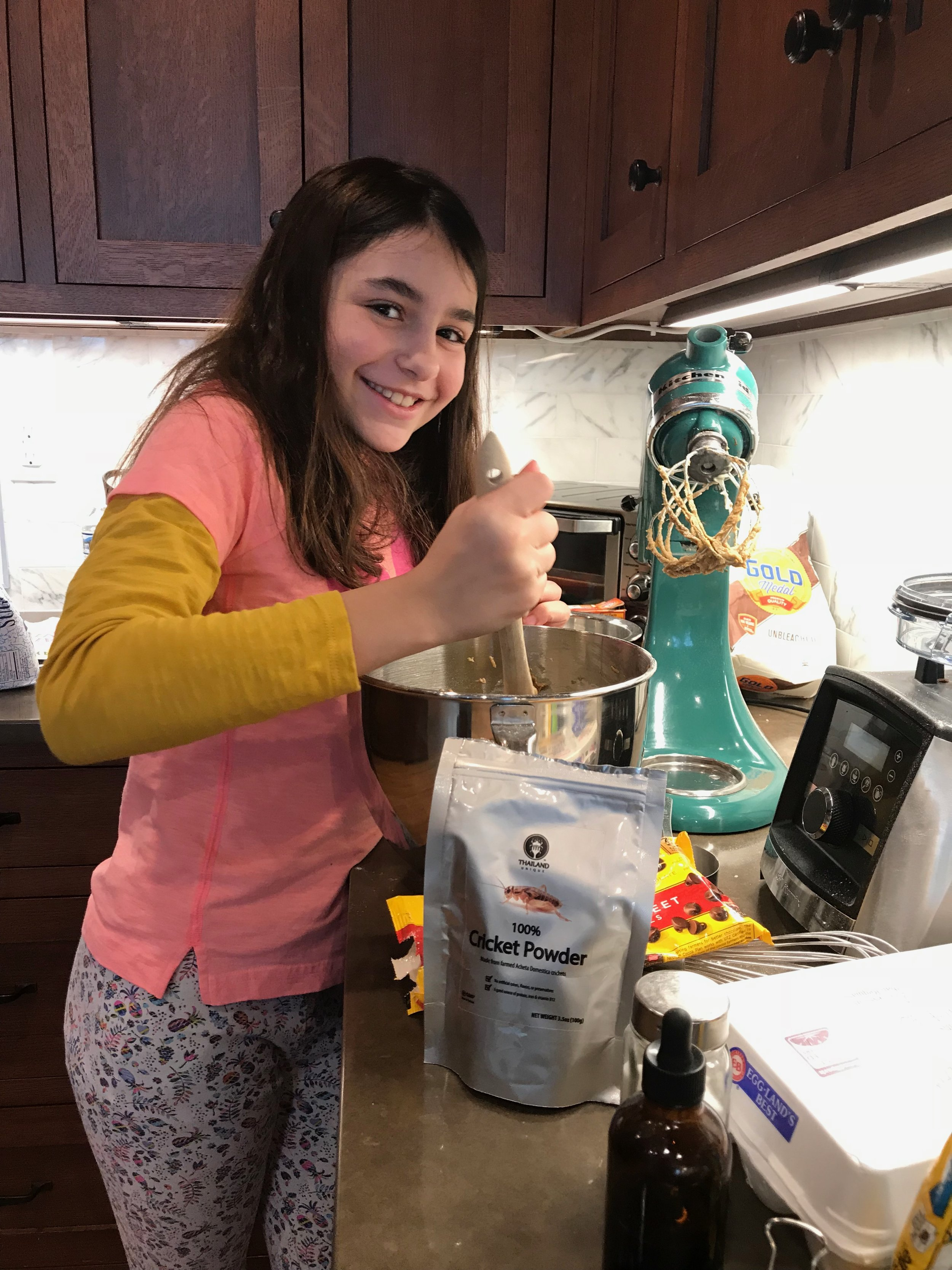 My daughter making chocolate chip  cricket  cookies. Even those initially repelled by the idea of eating insects could not resist, they were slightly earthy tasting, and delicious!