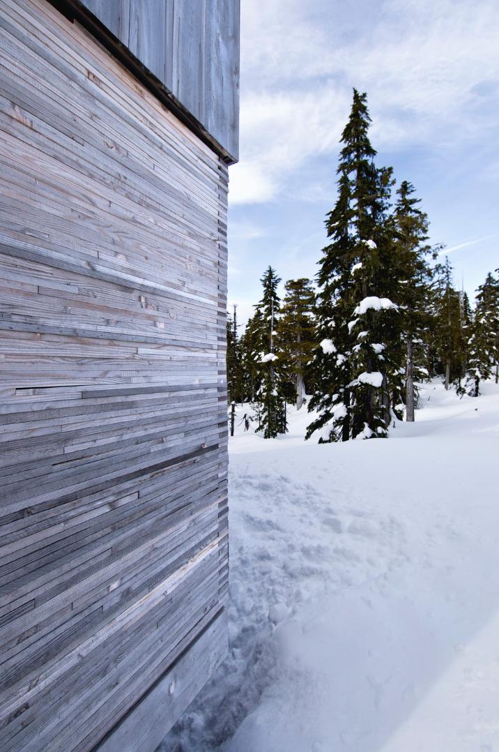 Alpine Cabin / Scott & Scott Architects