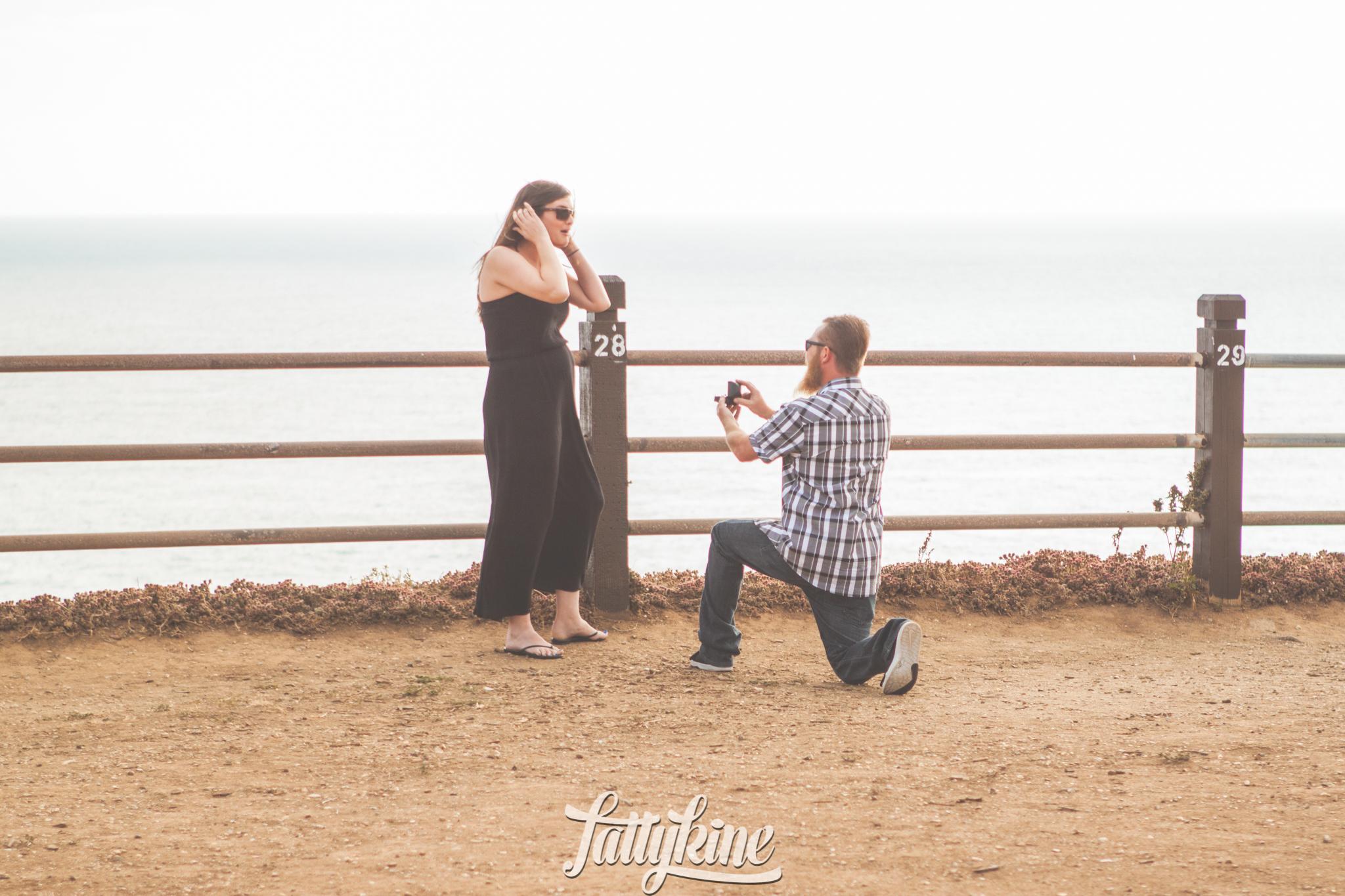 Casey + Lauren_Proposal_web-3.JPG