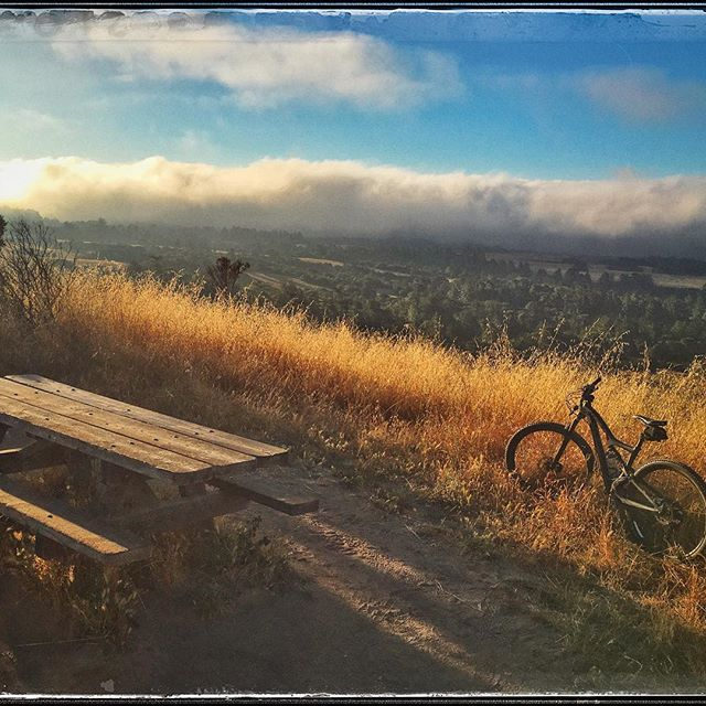 Summer is here #mtb #scenic #ibis #santacruz #lovinlife #favoritespotonearth