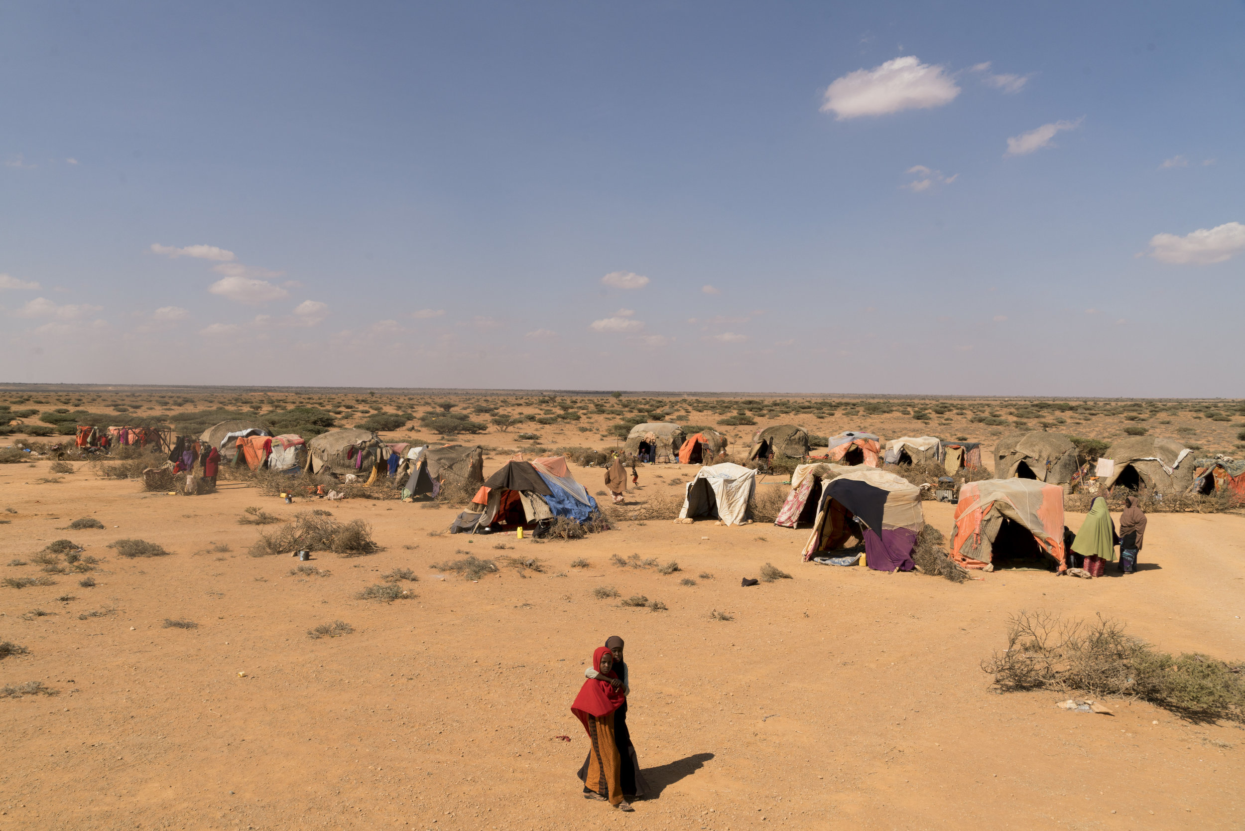 The shelters of nearly 400 pastoralists families who have lost a majority of their livestock due to drought, have set up camp along the road in search of food and water in Uusgure, Puntland, northern Somalia, February 18, 2017.
