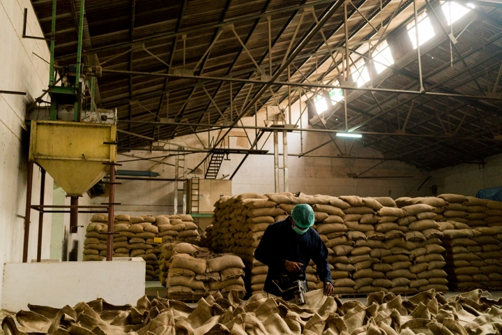 A man closes 50kg bags of rice at the Amira processing and packaging plant in Gurgaon, Delhi, India, October 6, 2016.