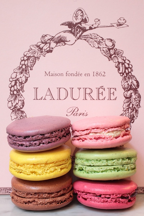 """Delicate and rather """"precious"""" these French macarons are an addiction shared by millions."""