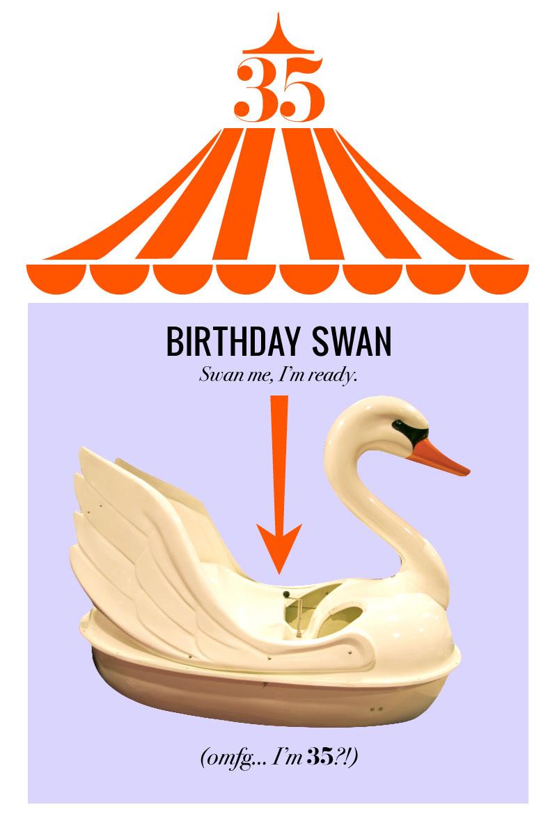 Birthday-Swan.jpg