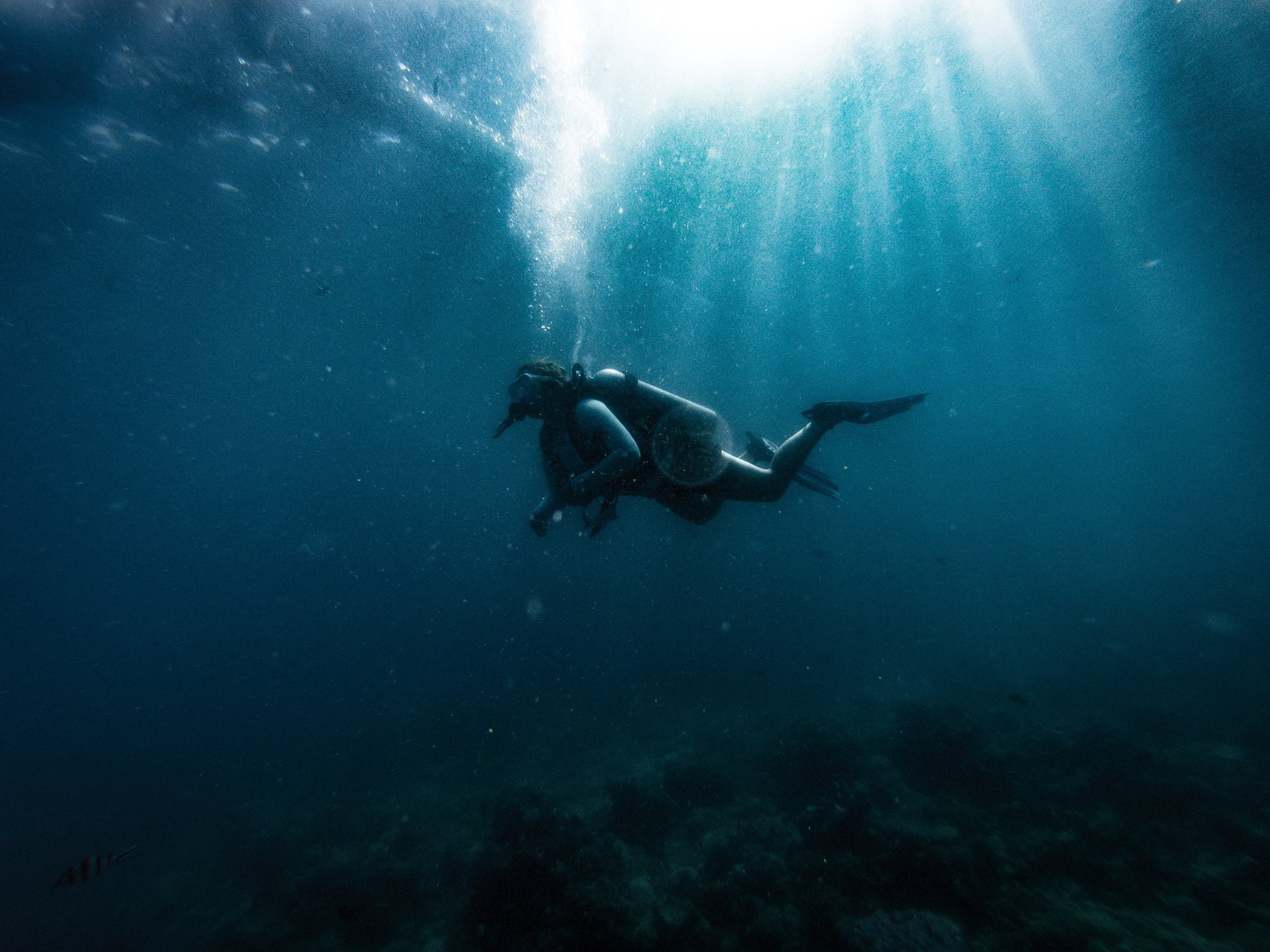 This image was shot on a Hero 5 about 15 feet underwater.