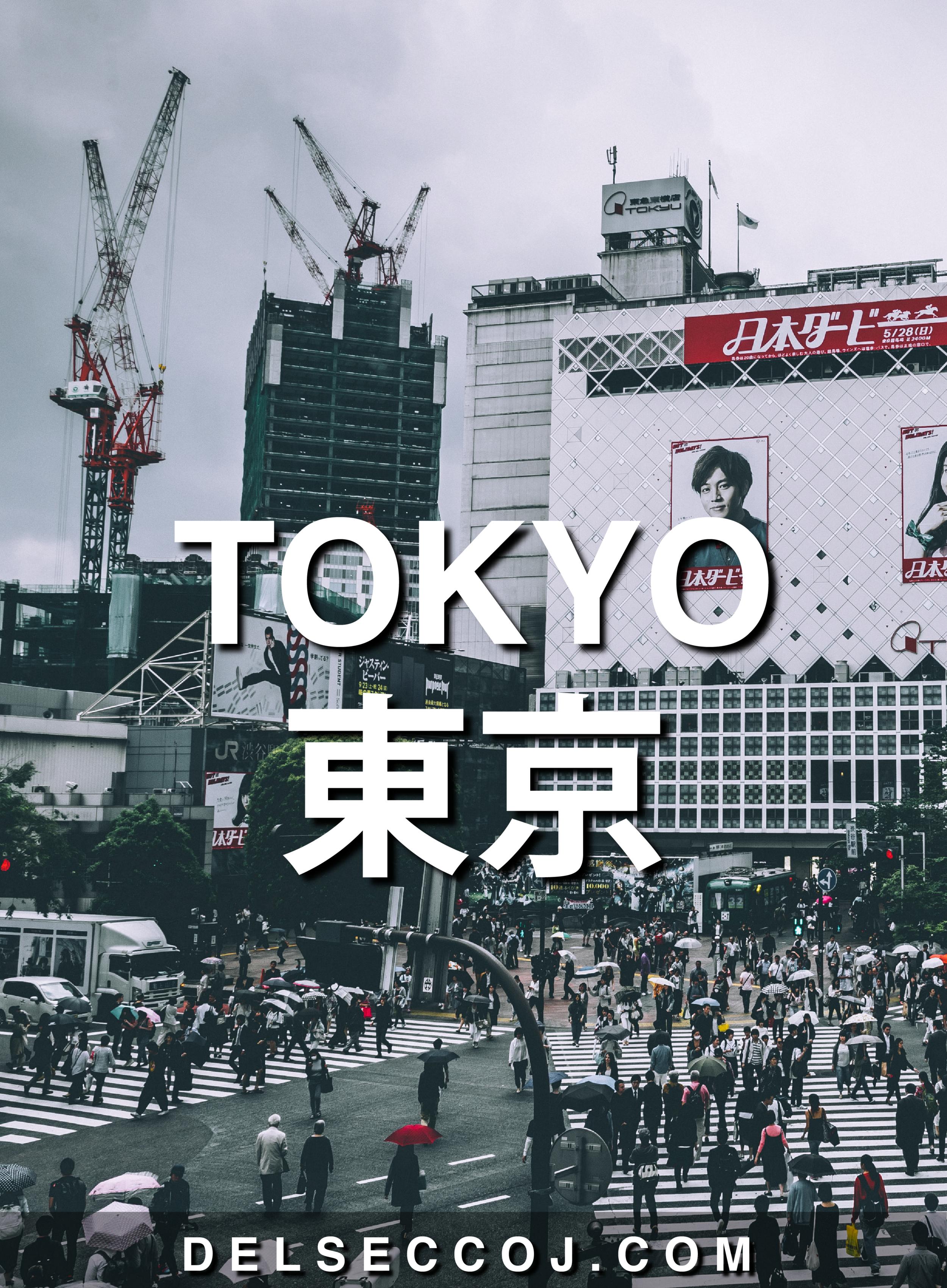 TokyoPin-01.png