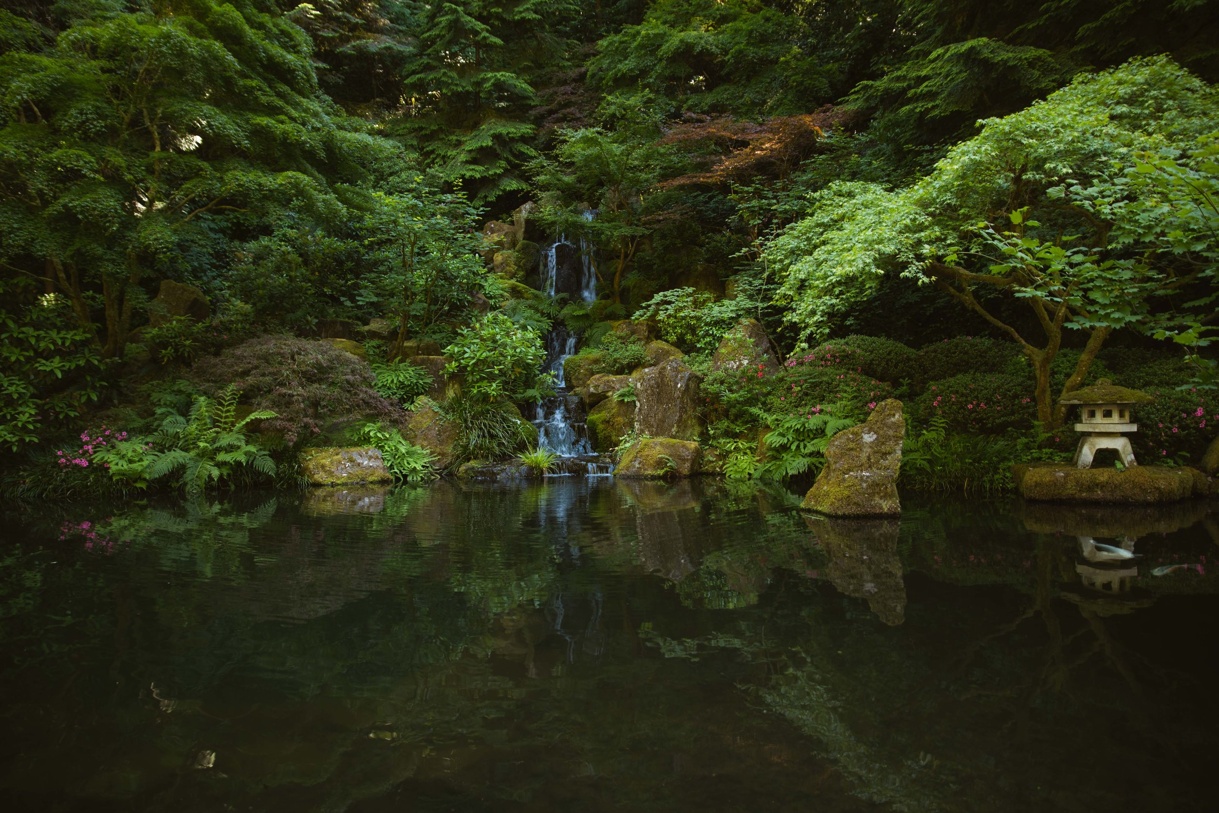 Portland Japanese Garden's Natural Garden has multiple ponds, waterfalls, and streams