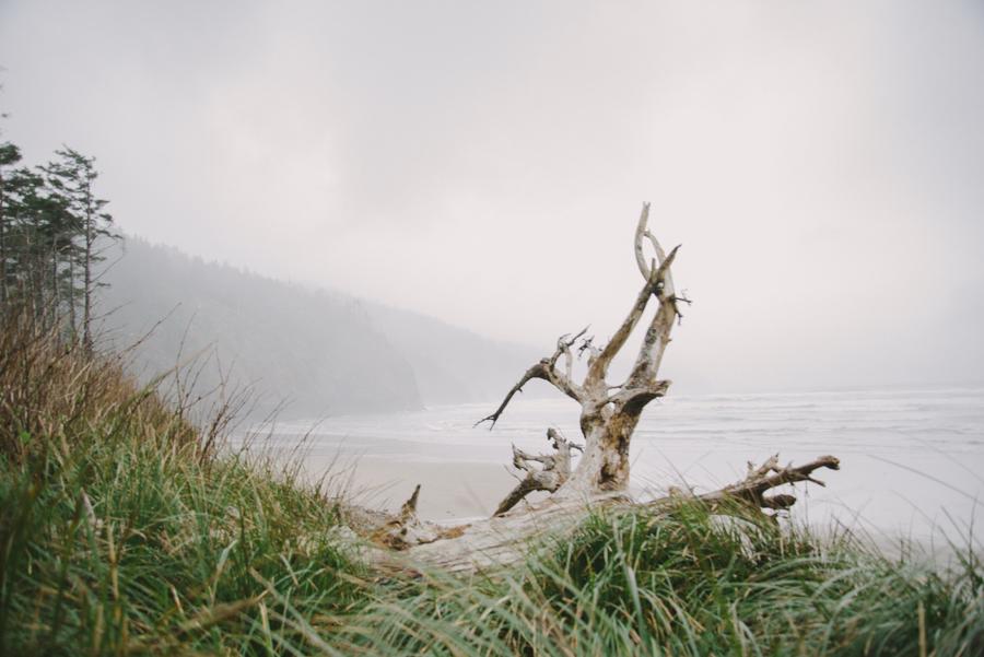 Magnuson_beach_N640.jpg