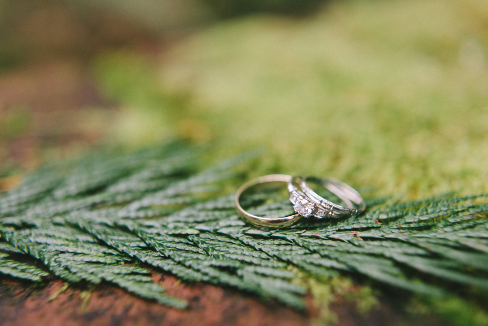 Leach-botanical-gardens-wedding-rings-fern