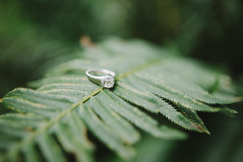Portland-oregon-engagement-session-photographer-diamond-ring-on-fern-hoyt-arboretum-washington-park-shelley-marie-photography-forest-natural-woodland-11