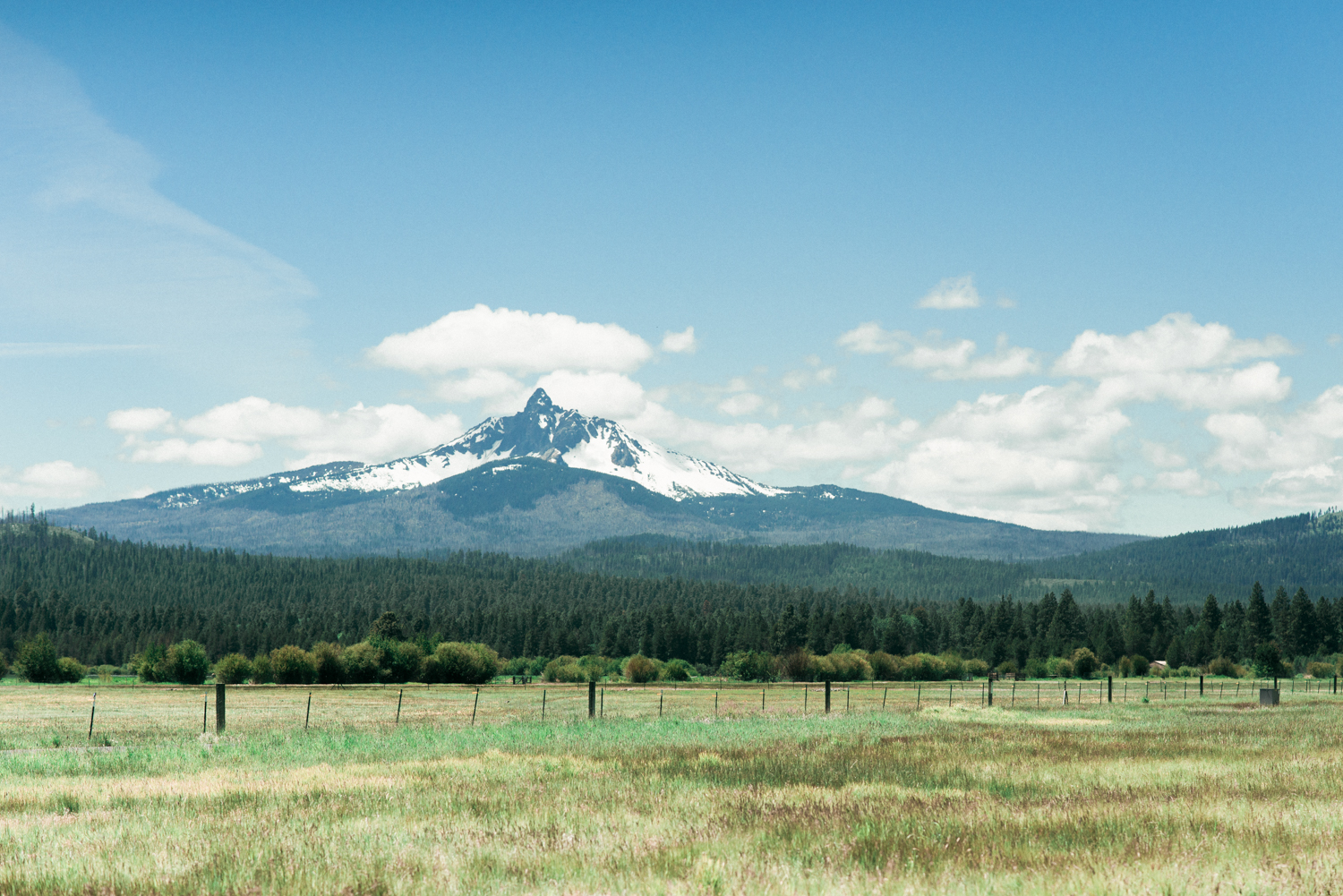 black-butte-ranch-oregon-wedding-photographer-shelley-marie-photo-amy-tyler-0002.jpg