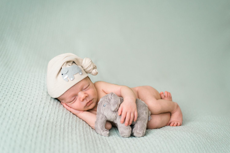portland-newborn-photography-sleeping baby-elephant-hat-stuffed-animal-shelley-marie-photo