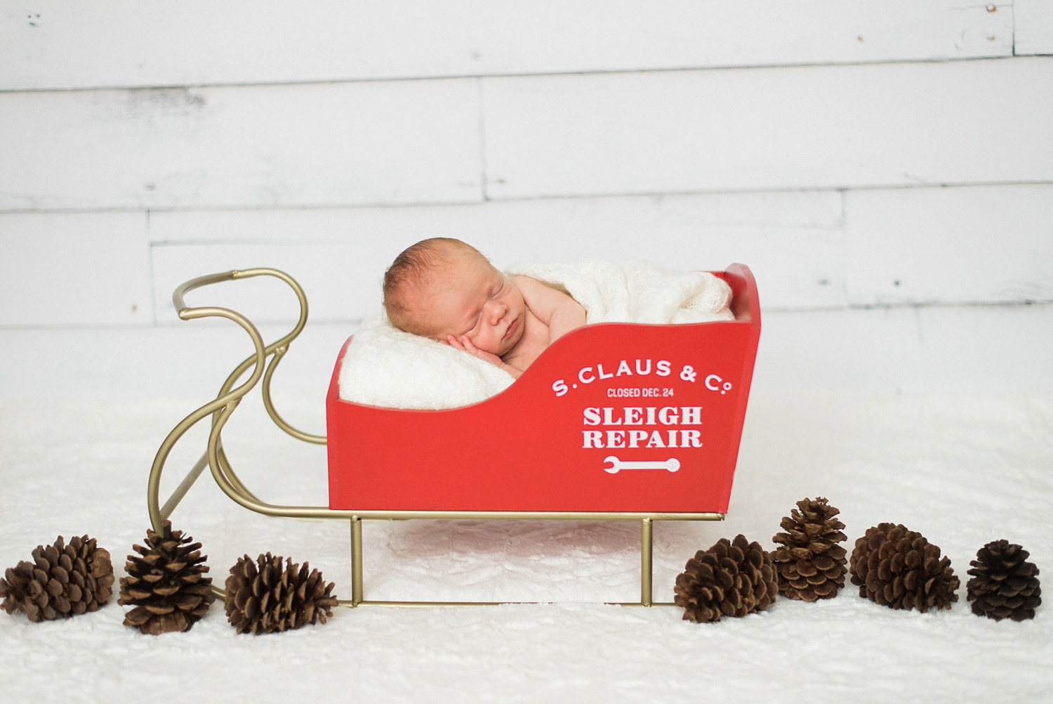 portland-newborn-baby-santa-christmas-sleigh-session-shelley-marie-photo-1.jpg