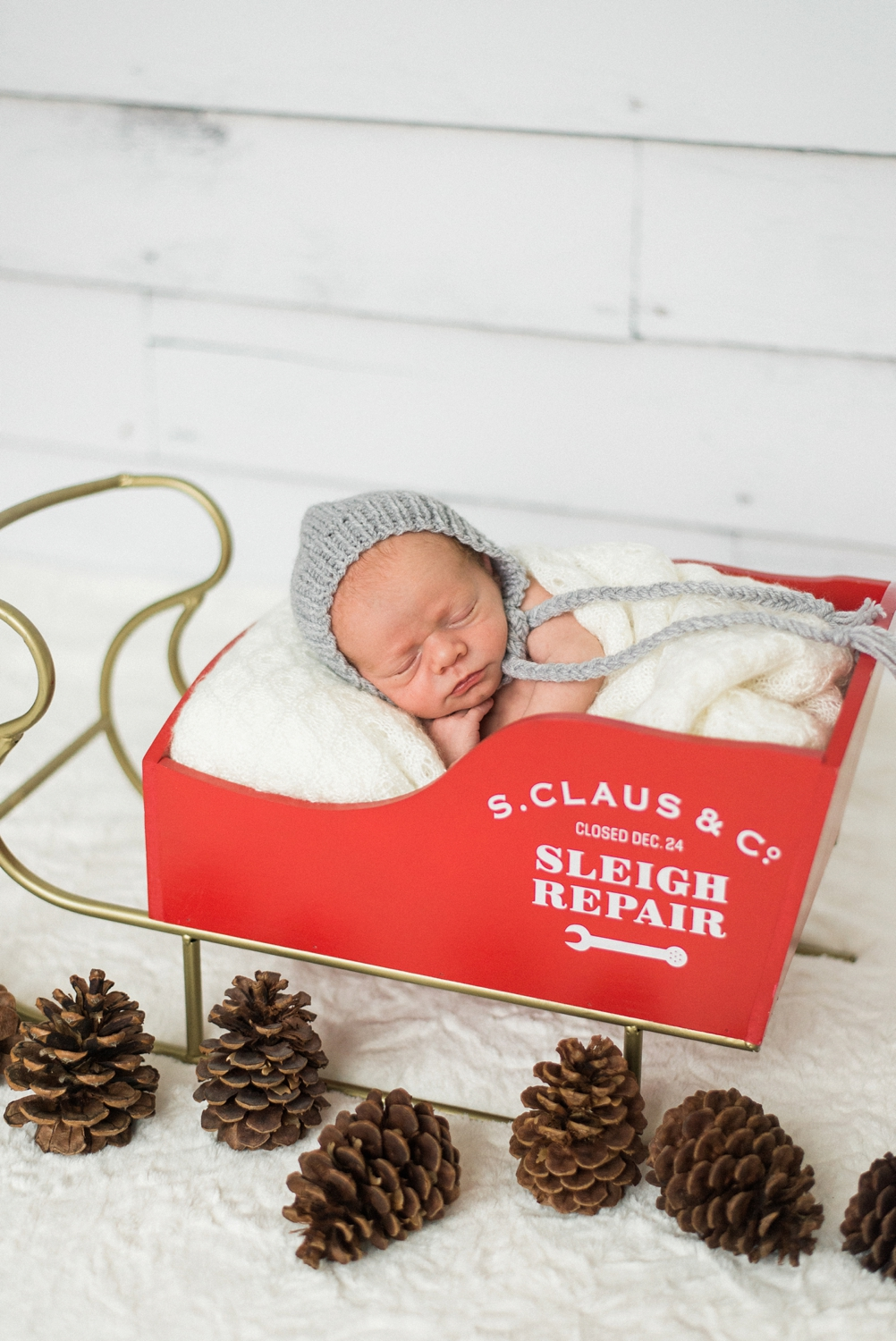 portland-newborn-baby-santa-christmas-sleigh-session-shelley-marie-photo-4.jpg