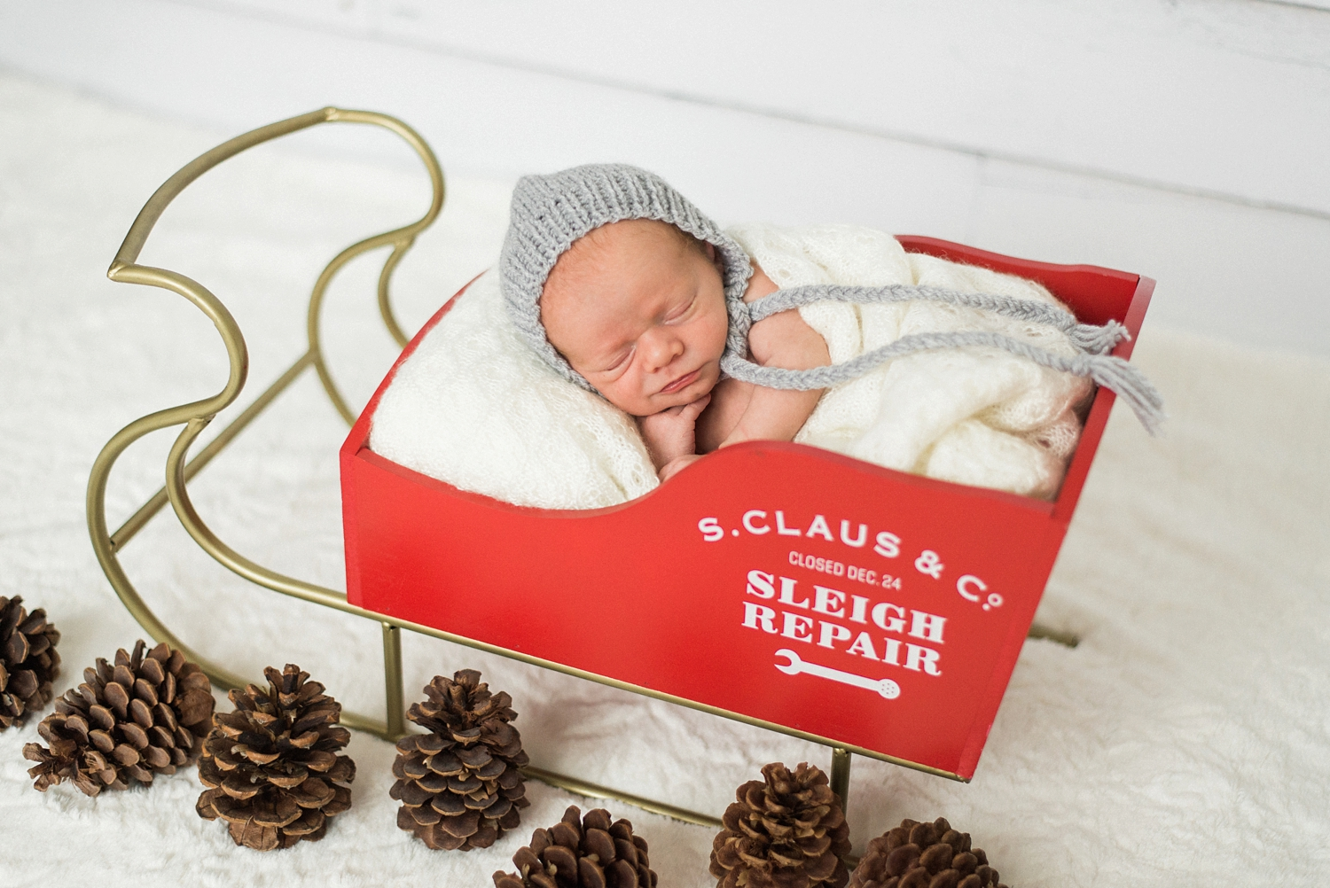 portland-newborn-baby-santa-christmas-sleigh-session-shelley-marie-photo-3.jpg